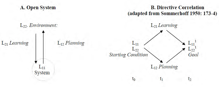 Figure 2. The Open System and Directive Correlation (From Emery (2012). IFSR Conversations 2012