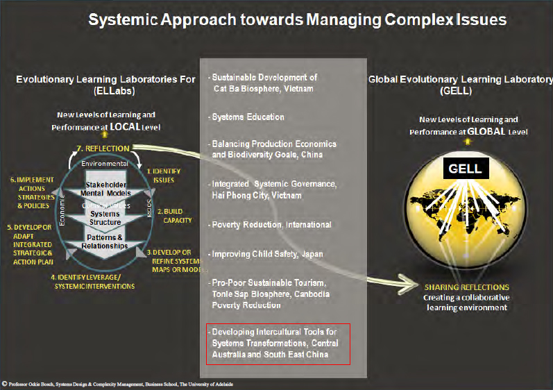 Systemic Approach towards Managing Complex Issues. IFSR Conversations 2012.