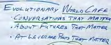 Team 3: Evolutionary World Cafe. IFSR Conversations 2012