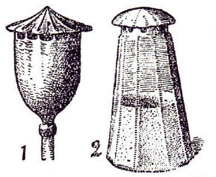 Salt shaker ('2') and poppy seed capsule ('1') from Raoul France [5], 'Die Pflanze als Ertinder', Kosmos Verlag, Stuttgart 1920, IFSR Newsletter 1994 Vol 13 No. 1 (32)