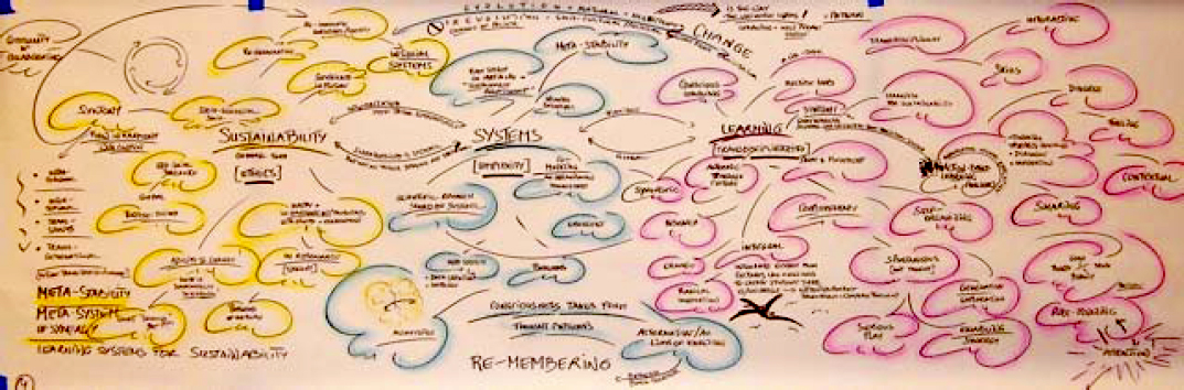 Figure 5: Team 3: Learning Systems for Sustainability, Proceedings of the IFSR Conversations 2010, Pernegg, Austria